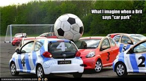 Fetch the ball! Good Yaris!