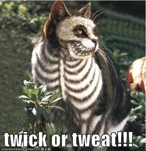 twick or tweat!!!