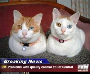 Breaking News - Problems with quality control at Cat Central