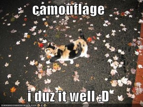 camouflage  i duz it well :D