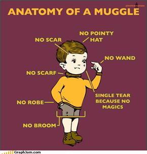 QQ, Muggle