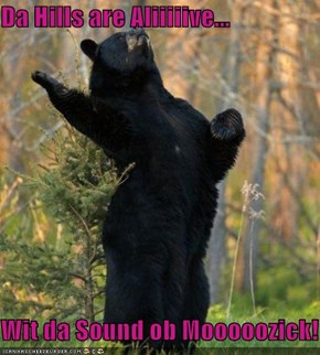 Da Hills are Aliiiiive...  Wit da Sound ob Mooooozick!