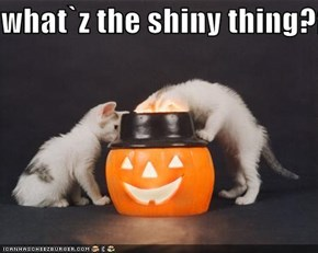 what`z the shiny thing??