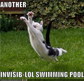 ANOTHER  INVISIB-LOL SWIMMING POOL