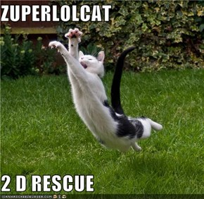ZUPERLOLCAT  2 D RESCUE