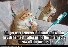 Ginger was a secret lolaholic and would brush her teeth after using the internet to throw off her owners.