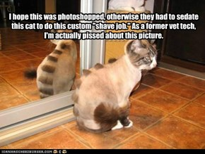 "I hope this was photoshopped, otherwise they had to sedate this cat to do this custom ""shave job."" As a former vet tech, I'm actually pissed about this picture."