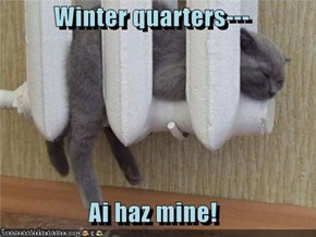 Winter quarters---  Ai haz mine!