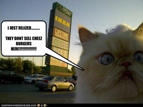 I JUST RELIZED...........THEY DONT SELL CHEEZ BURGERS HERE!!!!!!!!!!!!!!!