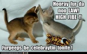 Dexter an Brubby Gabe be dansin mongst da stars wif joy!