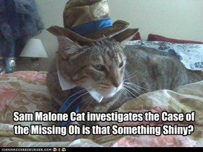 Sam Malone Cat investigates the Case of the Missing Oh is that Something Shiny?