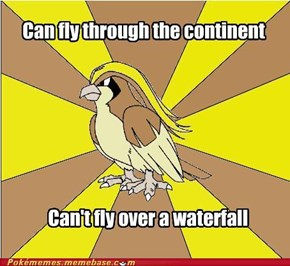 Better Get a Water/Flying Type