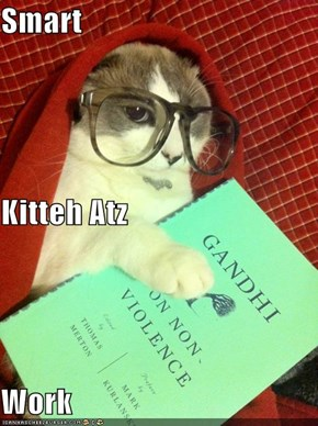 Smart Kitteh Atz Work