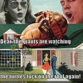 Dear..the giants are watching the turtles fuck on the roof again!
