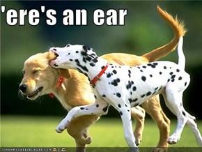 'ere's an ear