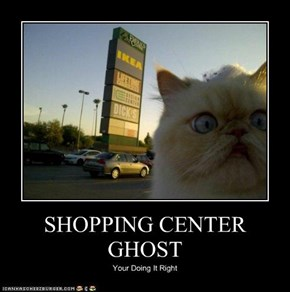 SHOPPING CENTER GHOST