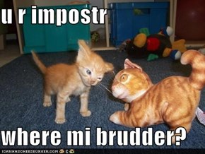 u r impostr  where mi brudder?