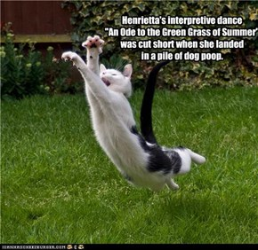 "Henrietta's interpretive dance ""An Ode to the Green Grass of Summer"" was cut short when she landed in a pile of dog poop."