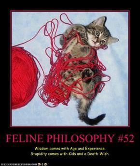 FELINE PHILOSOPHY #52