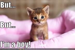 But... But... I'm a boy!