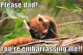 Please dad!  You're embarrassing me!!