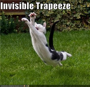 Invisible Trapeeze