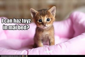 I can haz toyz in mai bed?