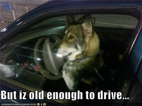 But iz old enough to drive...