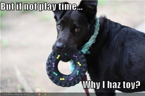But if not play time...  Why I haz toy?