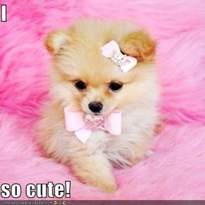 I  so cute!