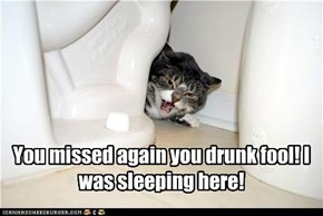 You missed again you drunk fool! I was sleeping here!