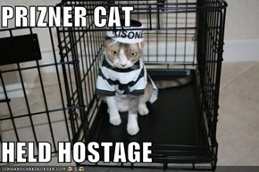 PRIZNER CAT   HELD HOSTAGE