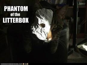 Better Dan CATS, Aktewly.