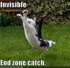 Invisible  End zone catch.