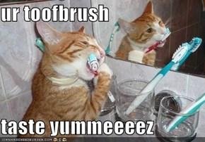 ur toofbrush  taste yummeeeez