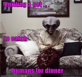 Knitting a net . . .     to catch          humans for dinner