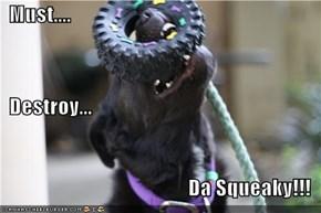 Must....    Destroy...   Da Squeaky!!!