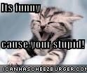 Its funny   cause your stupid!