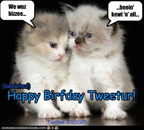 (belated) Happy Birfday Tweetur!