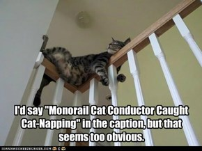 "I'd say ""Monorail Cat Conductor Caught Cat-Napping"" in the caption, but that seems too obvious."