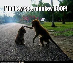 Monkey see, monkey BOOP!