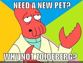 NEED A NEW PET?    WHY NOT ZOIDEBERG?