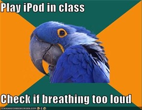 Paranoid Parrot: Song Stops, Everything Seems Quiet