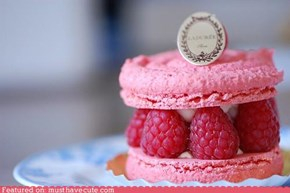 Epicute: Pink Raspberry Meringue