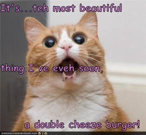 It's...teh most beautiful   thing I've eveh seen, a double cheeze burger!