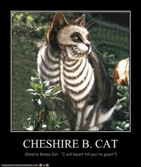 CHESHIRE B. CAT