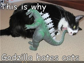This is why  Godzilla hates cats