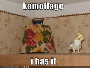 kamoflage  i has it