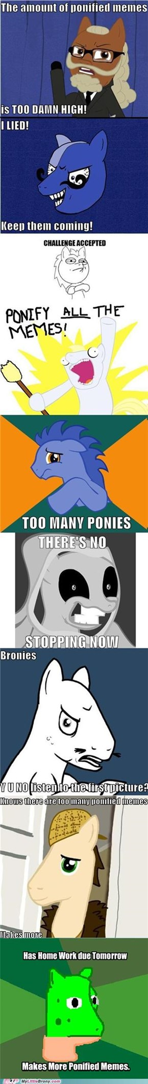 Yo Pony, I Heard You Like Memes...