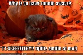 Why iz yu nawt runnin awayz?  I'z SKEEEEEERY!! (Quitz smilin at me!)